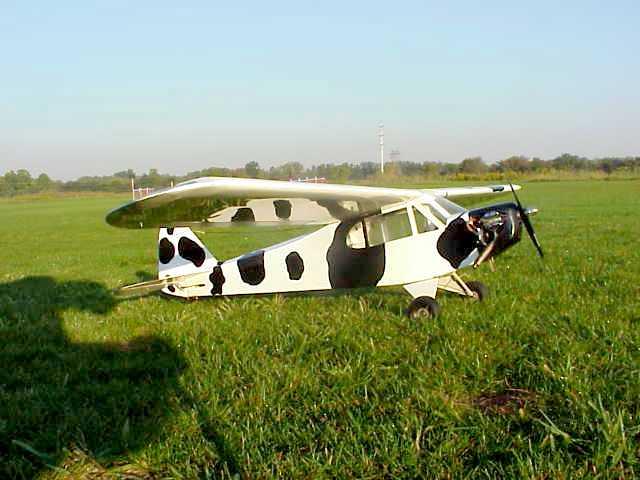 Bert's R/C Airplane Page